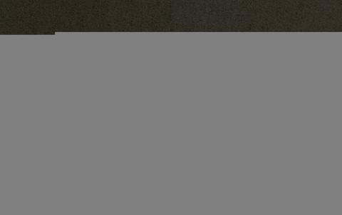 Фальцевая кровля Alunova алюминиевая лента, MATT, темно-коричневый, цвет RR32