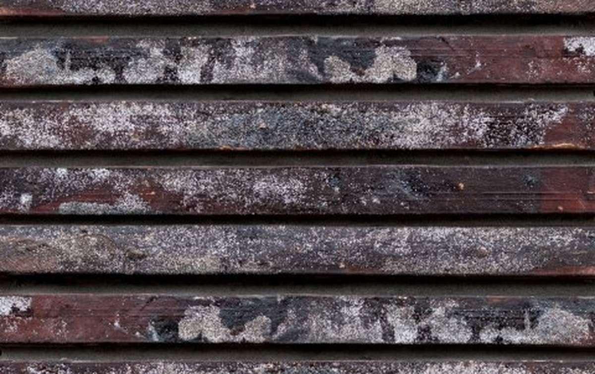 фасадная плитка ригельформат БКЗ, Петропавловск, многоцветный, 515x100x38